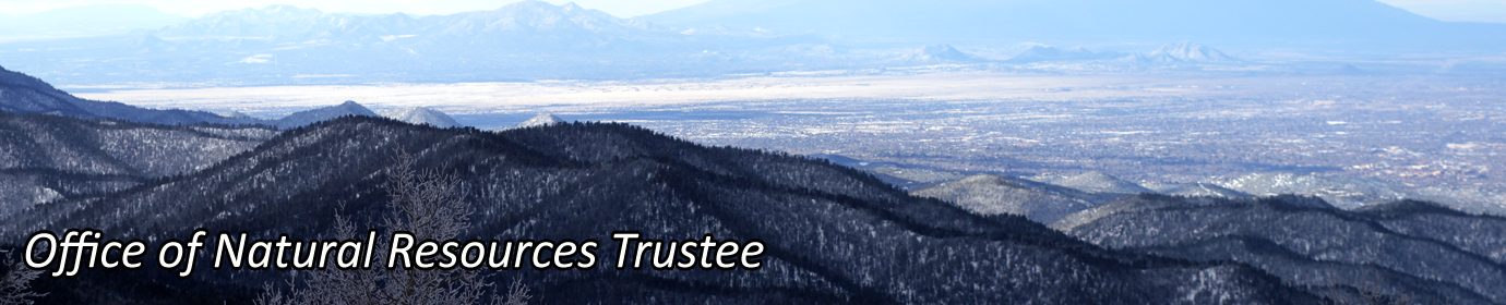 Office of Natural Resources Trustee